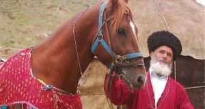 b_300_300_16777215_00_images_1396-News_Mordad-96_Mordad-27_Turkmen-Hours-27-M